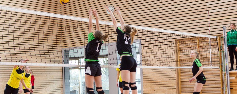 Willkommen bei der Volleyballabteilung